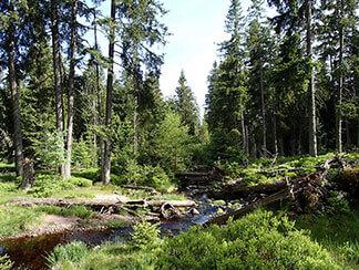 Ausflugsziele Harz